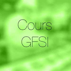 Cours GFSI